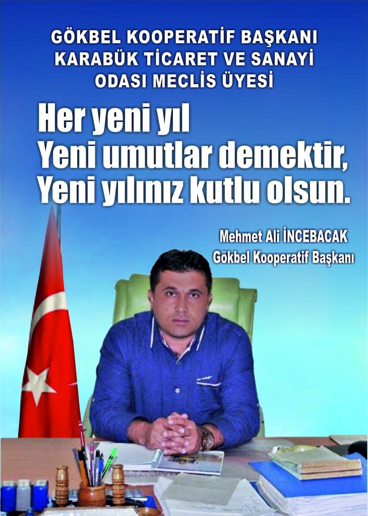 Mehmet Ali İncebacak 2